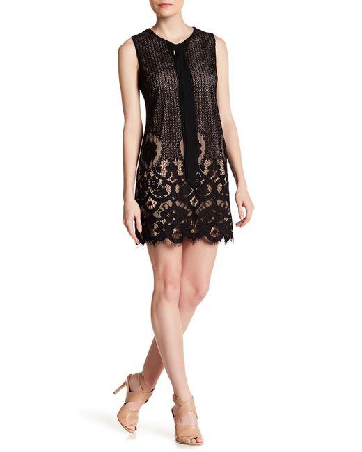 Cece by Cynthia Steffe   Black Rosie Tie Neck Lace Dress   Lyst