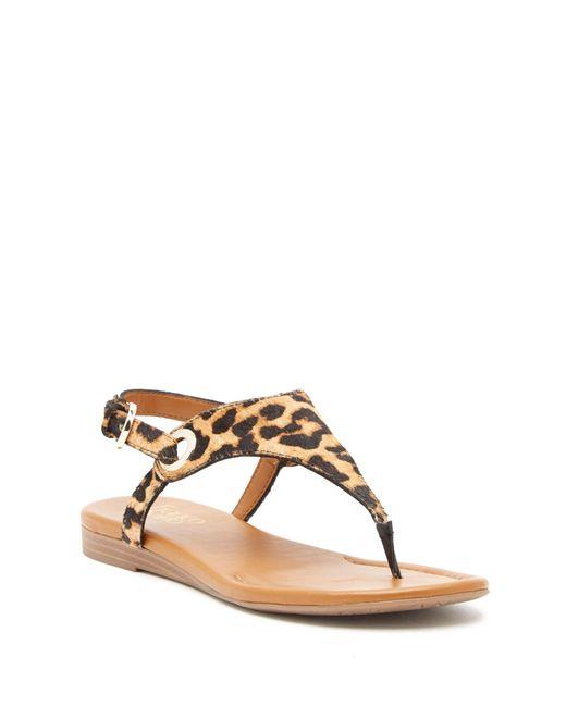 Franco Sarto - Brown Goldy Genuine Calf Hair Sandal - Lyst