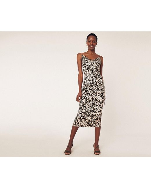 88371ef9e018 Oasis - Multicolor Animal Cowl Midi Dress - Lyst ...