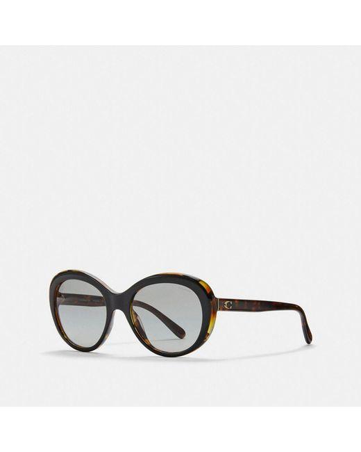 197689ddba COACH - Black Beveled Edge Oval Sunglasses - Lyst ...