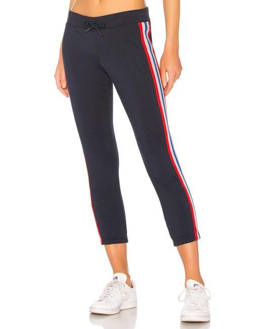 Pam & Gela - Blue Sweatpant With Bird Sport Stripes In Navy - Lyst