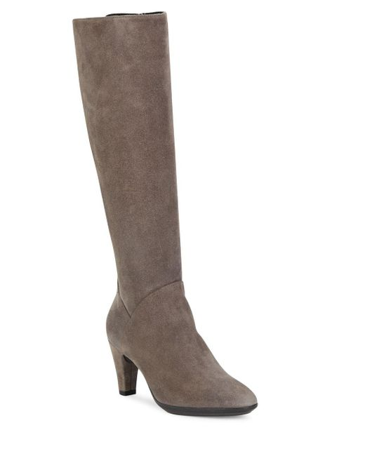 aquatalia danica suede knee high boots in gray lyst