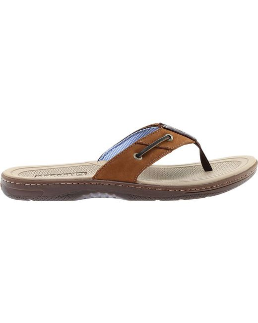 91e61281000 ... Sperry Top-Sider - Brown Baitfish Thong for Men - Lyst ...