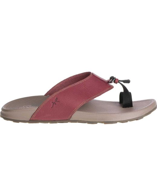 a7d65176bd65 ... Chaco - Multicolor Playa Pro Toe Loop Sandal for Men - Lyst ...