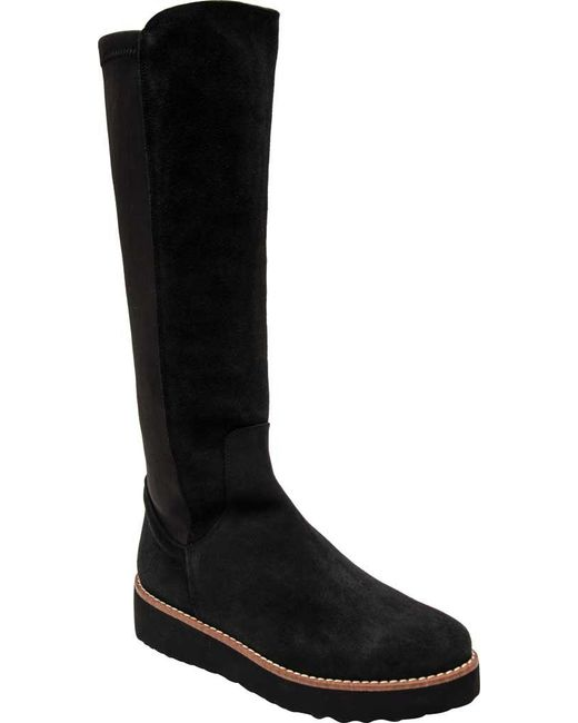 Andre Assous - Black Taina Mid Calf Boot - Lyst