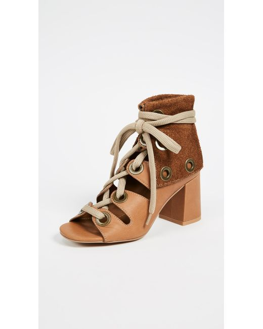 See By Chloé - Brown Selma Gladiator Sandals - Lyst