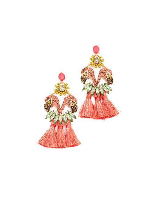 Elizabeth Cole | Multicolor Marina Earrings | Lyst