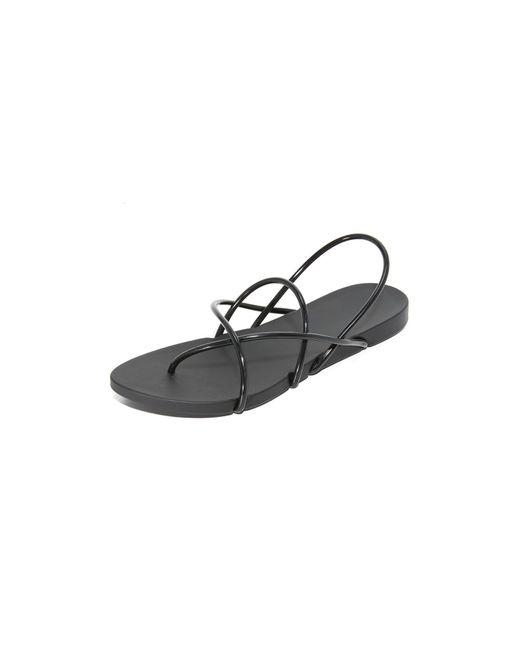 Ipanema | Black Philippe Starck Thing G Sandals | Lyst
