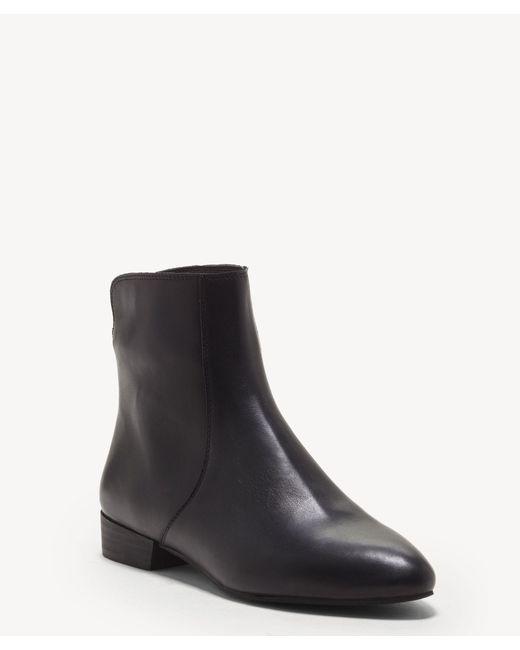 a17d9762afe Women's Black Glanshi Flat Bootie