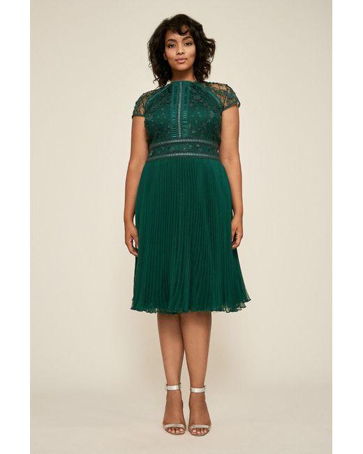 Tadashi Shoji Plus Size Dress