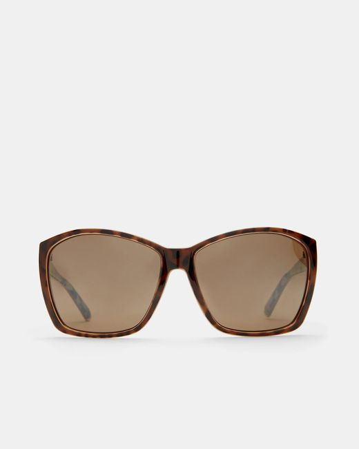 Ted Baker | Brown Oversized Printed Sunglasses | Lyst