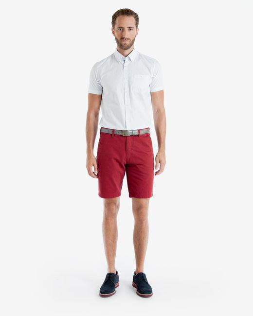 Ted Baker | Coloured Cotton Chino Shorts for Men | Lyst
