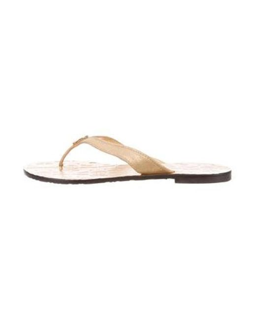 8f66beb61511 Tory Burch - Metallic Suede Thong Sandals Gold - Lyst ...