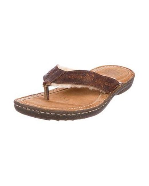 75032dffc69b3 ... Ugg - Brown Leather Thong Sandals - Lyst ...