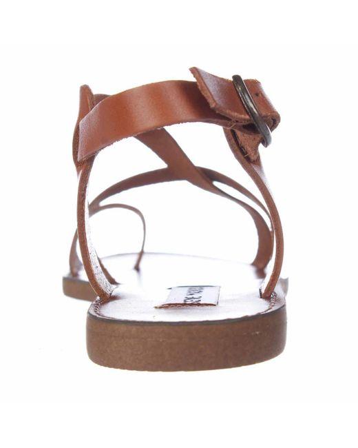 Steve Madden Agathist Toe Loop Flat Gladiator Sandals In