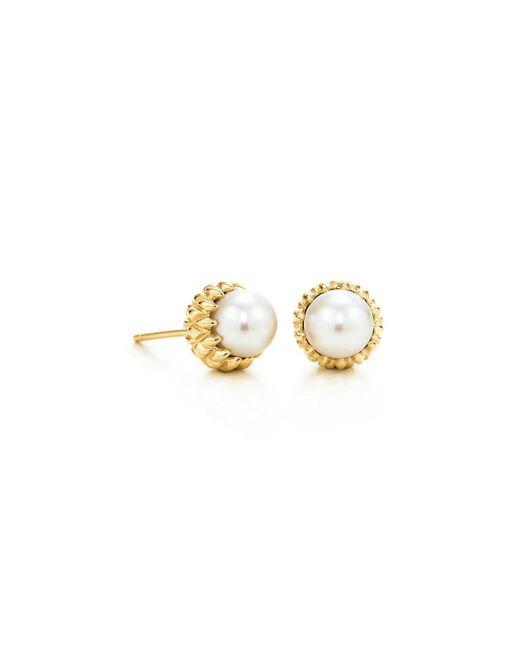 Tiffany & Co. Schlumberger | Metallic Acorn Earrings | Lyst