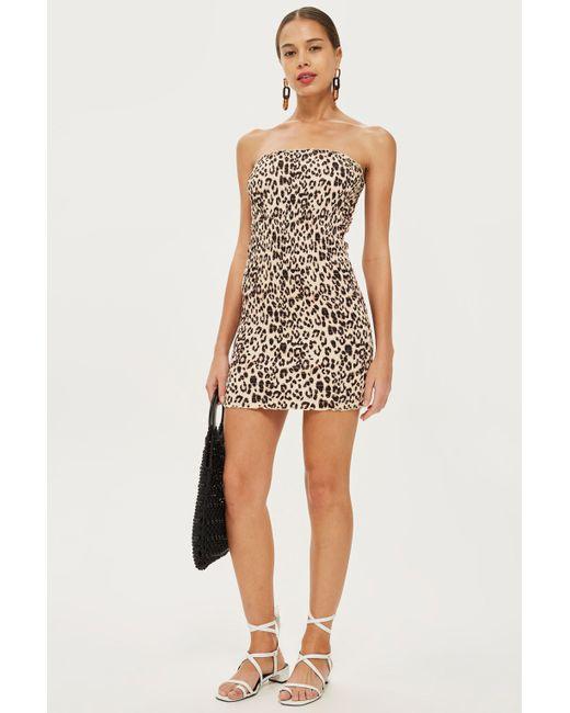 TOPSHOP - Multicolor Petite Leopard Bandeau Bodycon Dress - Lyst
