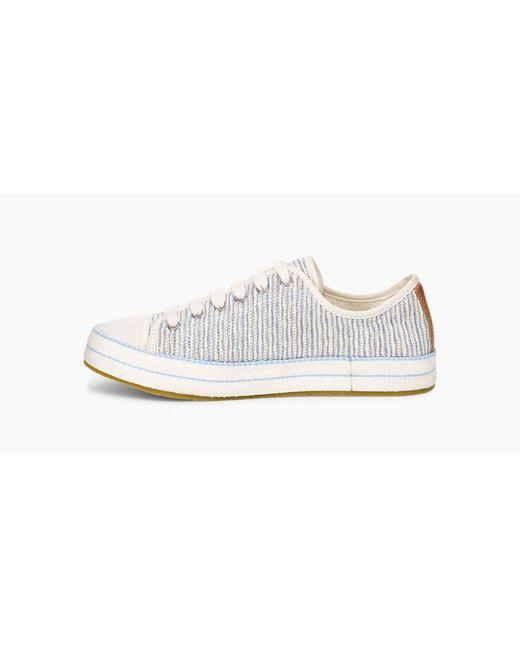 a89771c7d64 Women's Blue Claudi Waves Sneaker Claudi Waves Sneaker
