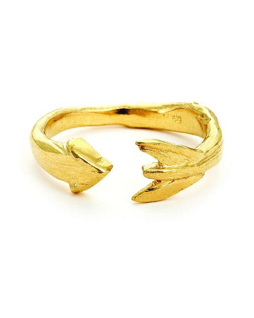 Chupi - Metallic Follow Your Dreams Arrow Ring In Gold - Lyst