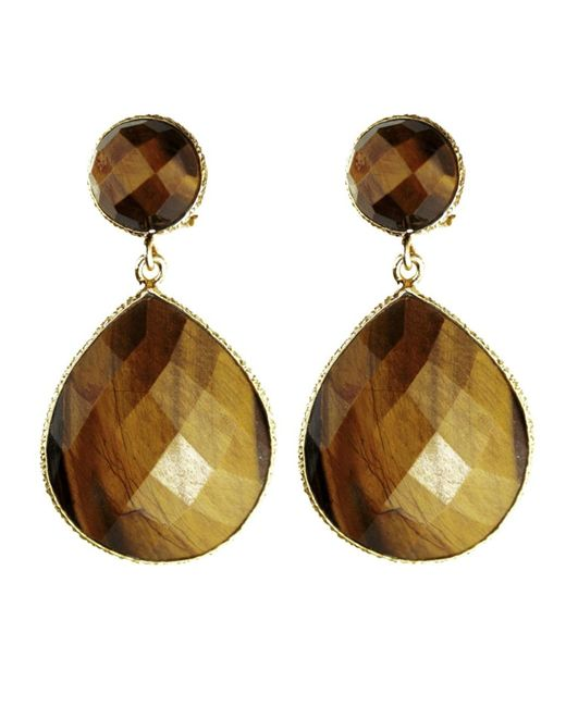 Carousel Jewels | Multicolor Small Drop Tiger Stone Earrings | Lyst