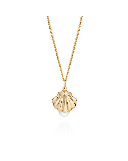 Lee Renee - Metallic Gold Double Side Shell Necklace - Lyst