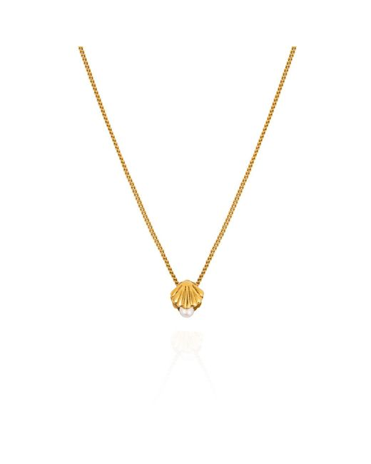 Lee Renee - Metallic Mini Shell & Pearl Necklace – Gold Vermeil - Lyst
