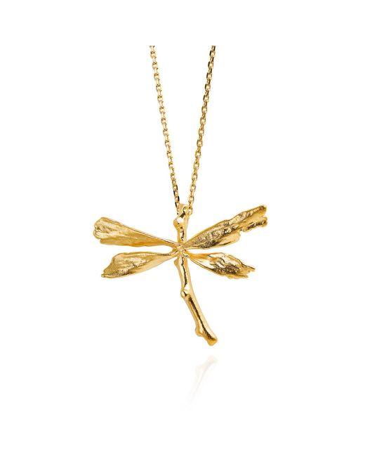 Catherine Zoraida | Metallic Dragonfly Necklace | Lyst