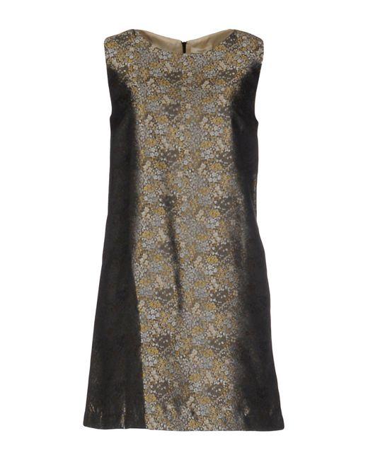 DRESSES - Short dresses Momoni Footlocker Pictures 0Cj2Rhp