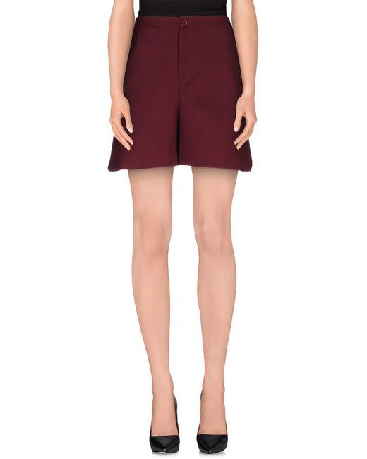 Erika Cavallini Semi Couture | Purple Bermuda | Lyst