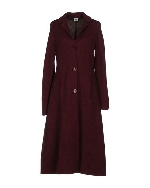 Purple overcoat
