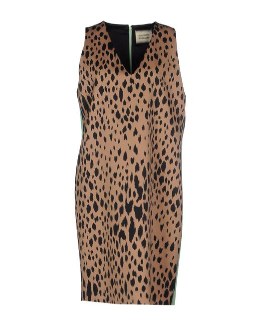 Fausto Puglisi | Brown Short Dress | Lyst