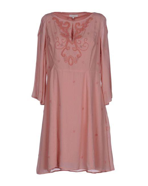 INTROPIA   Pink Short Dress   Lyst