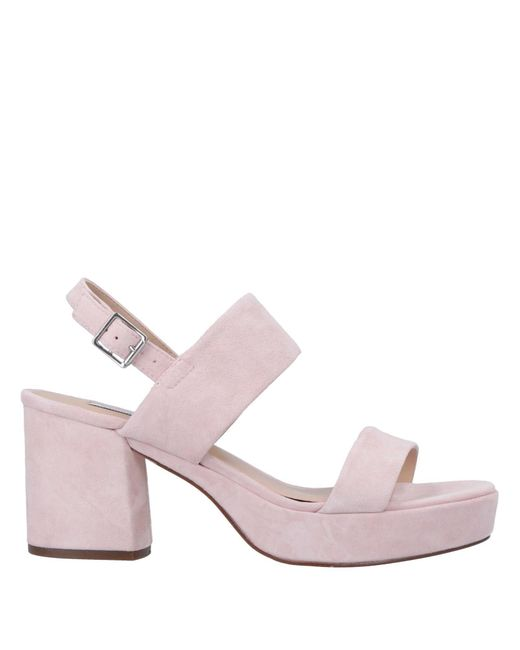 8a09b93bfd8 Steve Madden - Pink Sandals - Lyst ...