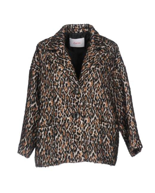 Jucca   Brown Coat   Lyst