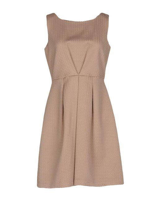 Darling - Brown Short Dresses - Lyst