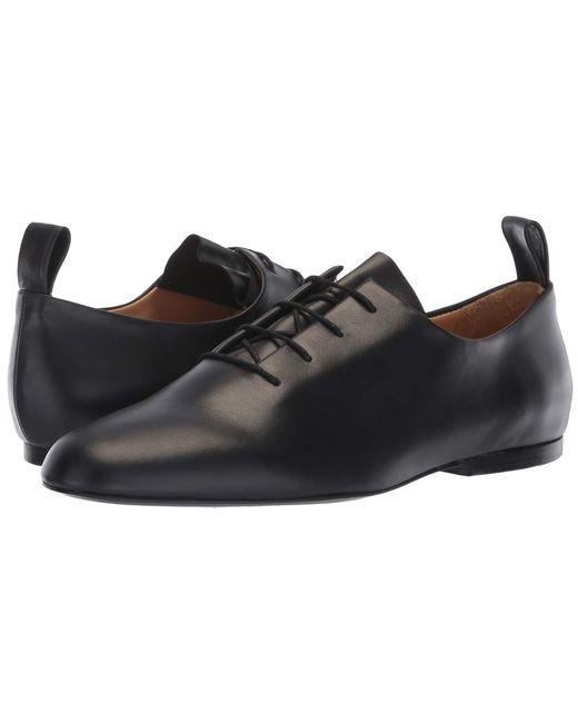 01287d51c03 Jil Sander Navy - Jn31003a (black) Women s Lace Up Cap Toe Shoes - Lyst ...