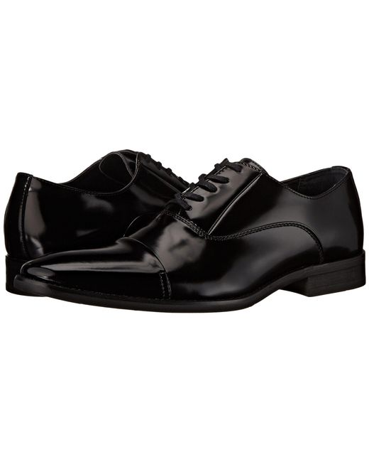Calvin Klein | Black Radley for Men | Lyst