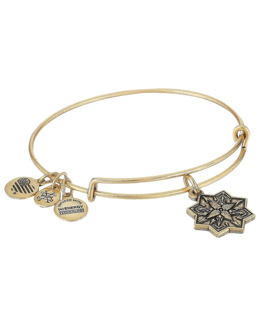 ALEX AND ANI - Metallic Healing Love Ii Bangle (rafaelian Gold) Bracelet - Lyst