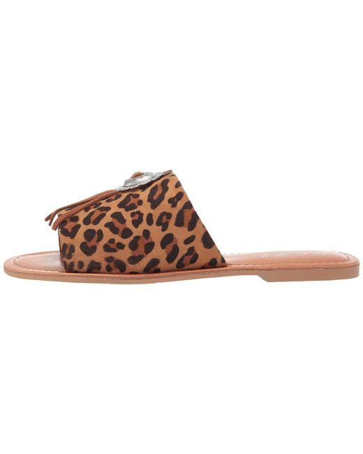 cf11f63eae00 ... Ariat - Brown Unbridled Ellie (leopard Suede) Women s Sandals ...