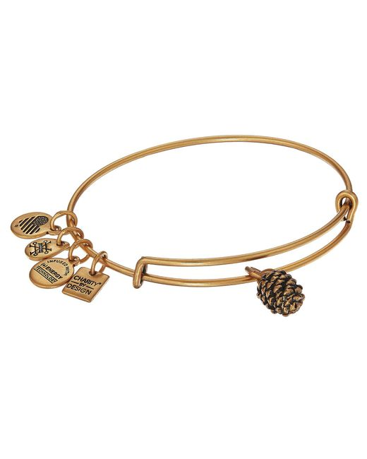 ALEX AND ANI - Metallic Charity By Design Pinecone Bangle (rafaelian Gold) Bracelet - Lyst