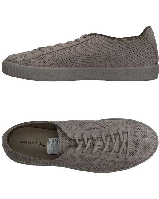 PUMA Men's Gray Low-tops & Sneakers