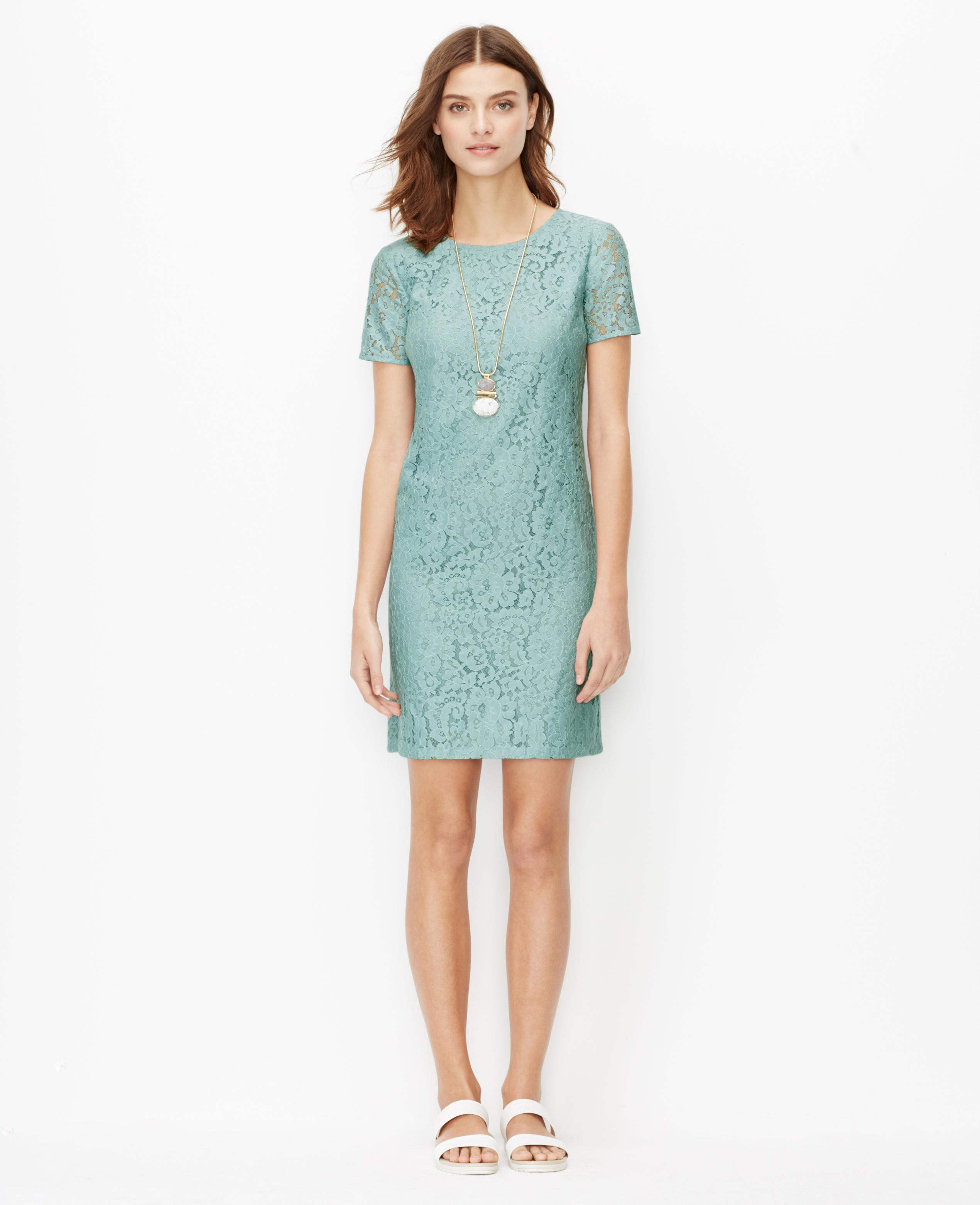 Ann Taylor Petite Lace Shift Dress In Blue