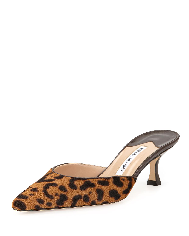 302b57371776f ... greece manolo blahnik pointed toe leopard printed flats 70783 00534