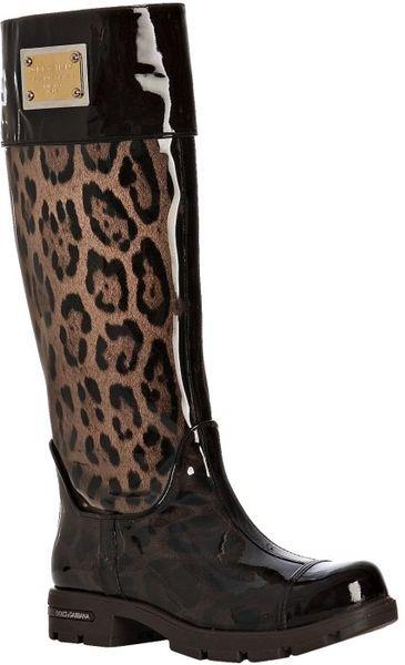 Dolce Amp Gabbana Brown Leopard Patent Trim Tall Rain Boots