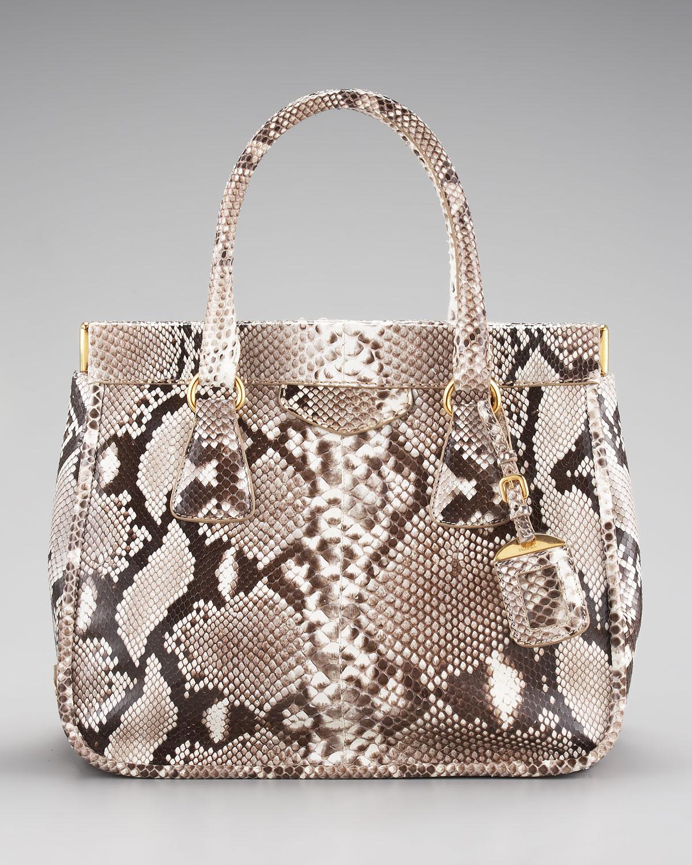 Prada Python Frame Bag in Animal (natural) | Lyst
