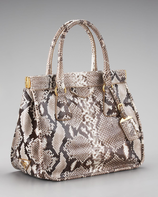 Prada Frame python and crocodile leather bag