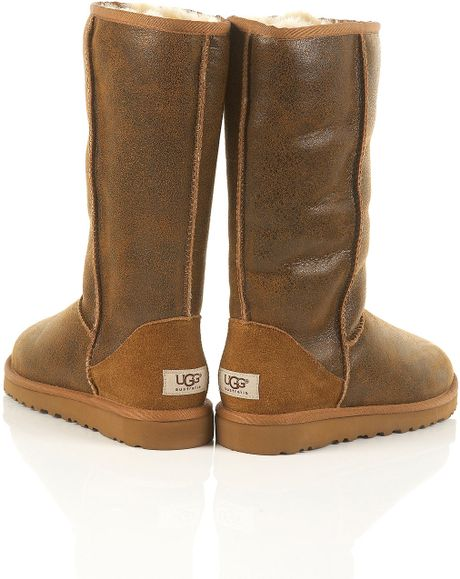 ugg boots brown tall - photo #46