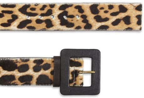 Saint Laurent Leopard Print Waist Belt In Animal Leopard