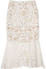 Alexander McQueen Crochet-embroidered Silk-organza Skirt