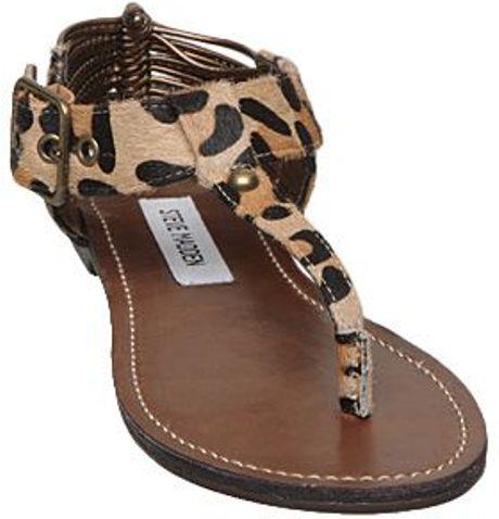 Steve Madden Serentil Sm Leopard Toe Post Flat Sandals In